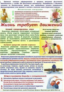 zdor_13